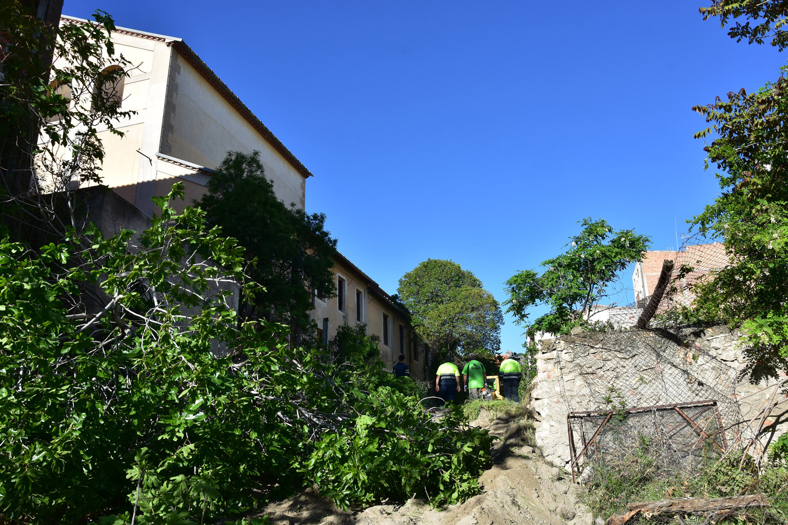 Desbroce solar junto teatro Dengra
