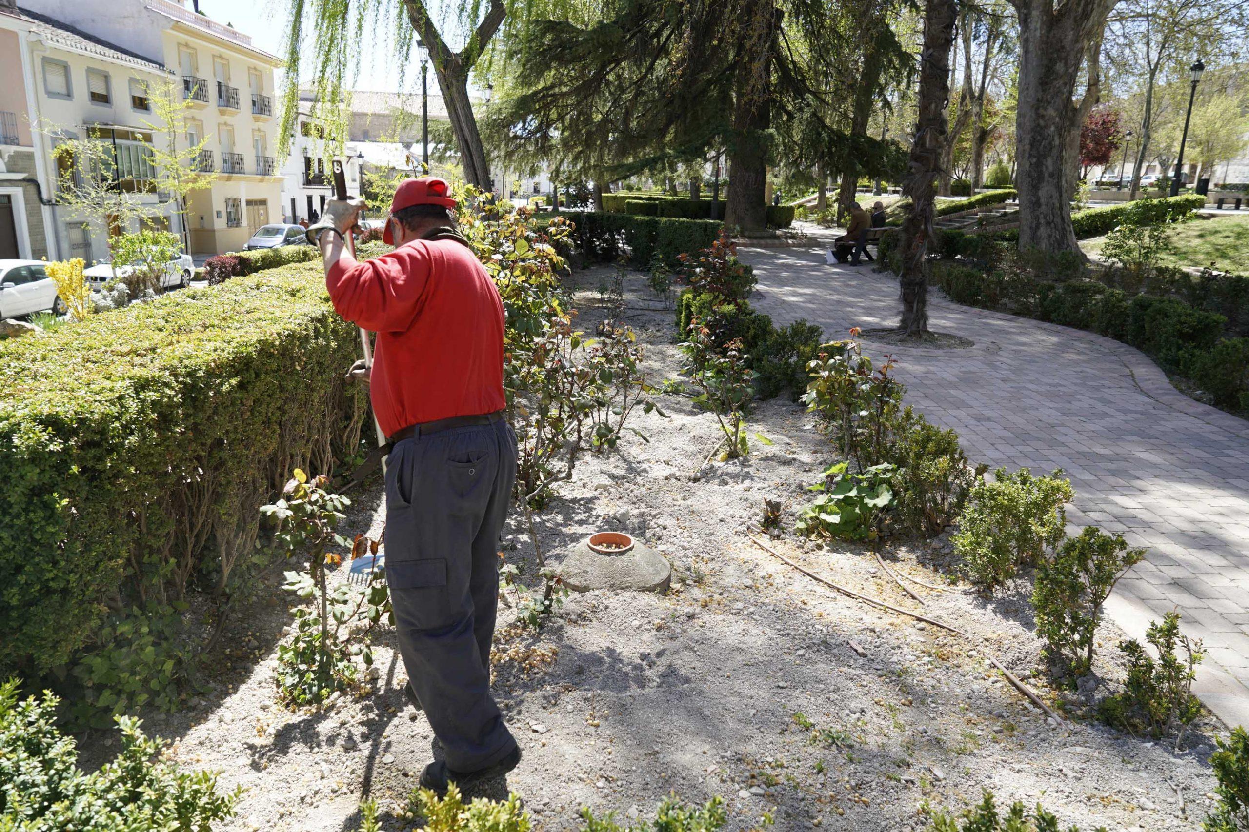Operaciones de jardinería en Baza
